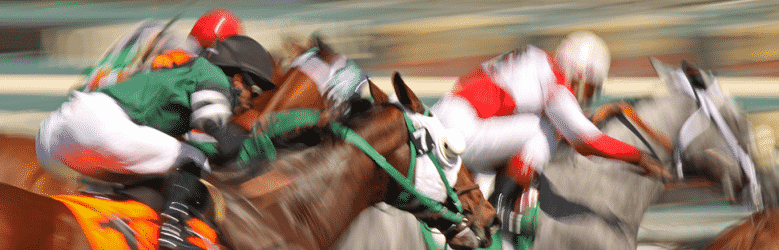 Watch horse racing at the Saratoga Race Course