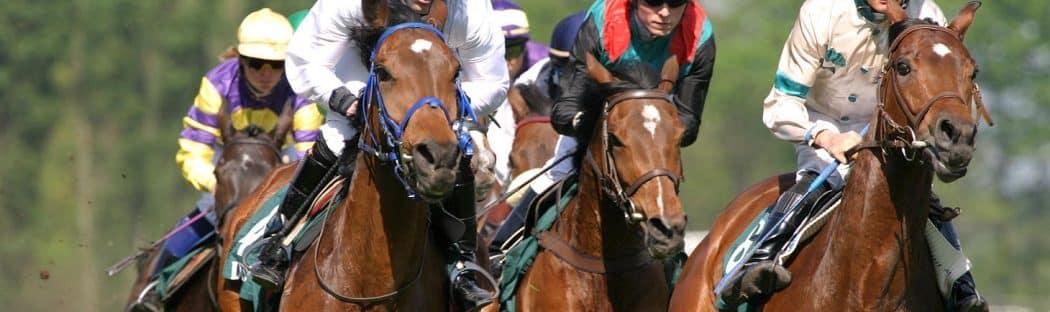 Jockeys on Race Horses