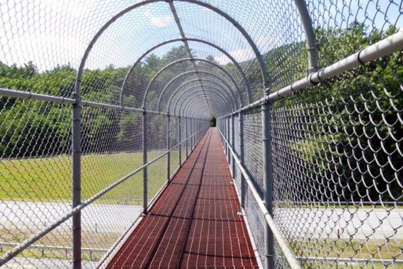 Bridge to Prospect Mountain