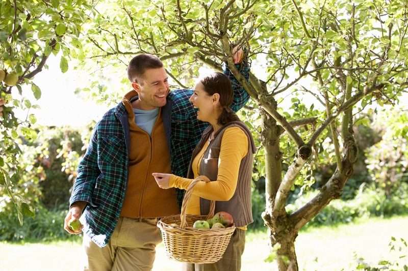 Happy couple holding basket full of apples in orchard